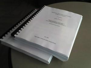 peters_dissertation_adj1-300x225