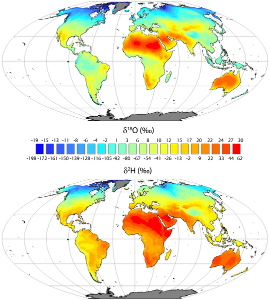 Global mean annual average leaf water