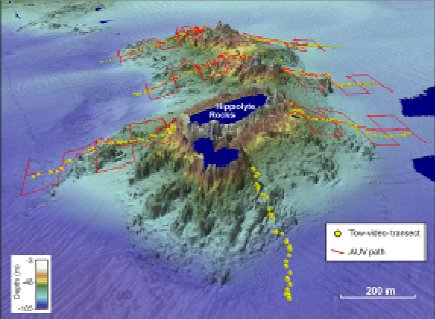 Multibeam sonar image of Hippolyte Rocks, Tasman Peninsula with survey lines for underwater video and AUV