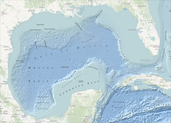 Esri's Ocean Basemap is a a crucial first step in the establishment of an oceans GIS