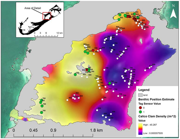 Map of potential benthic habitat use for pressure sensor tags in relation to prey density.