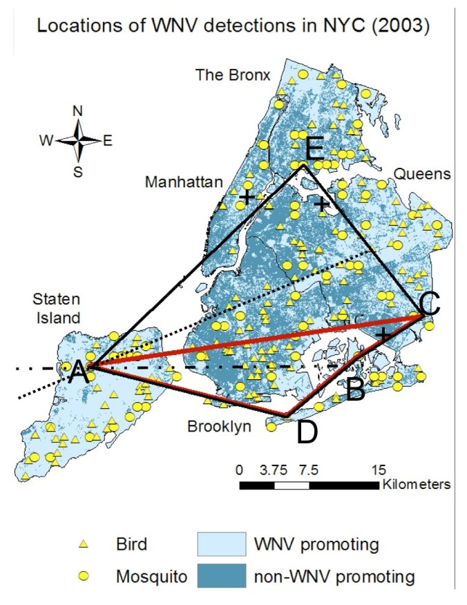 The spatial structure of annual WNV outbreaks in NYC, demonstrated for the year of 2003.
