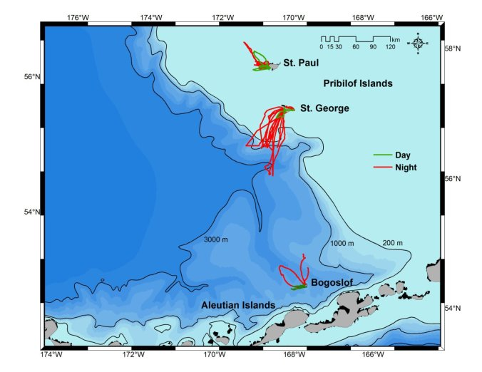 Study sites in the southeastern Bering Sea