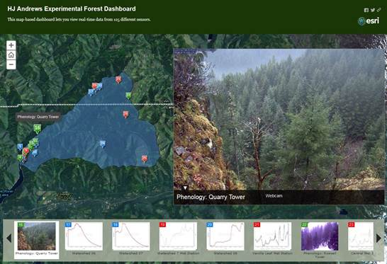 H.J. Andrews Experimental Forest Dashboard