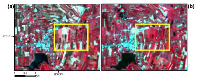 Color infrared Landsat 8 images acquired on 29 May 2013 (a) and 5 November 2013 (b). Red, Green, and Blue colors correspond to Band 5, Band 4, and Band 3. The yellow rectangle shows the location of the inset maps in Section 5.3.