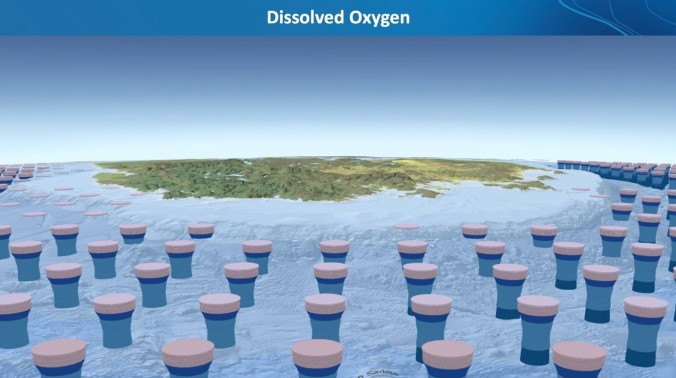 Ocean Deoxygenation – Another Global Challenge